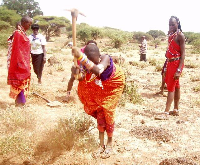gazelle harambee association