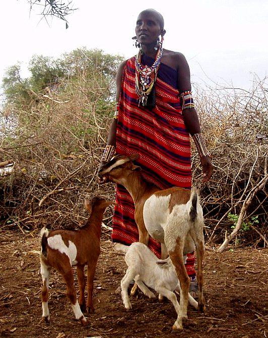 OLMOTI KENYA
