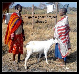Noomayianatt give a goat(kenya) gazelle harambee association