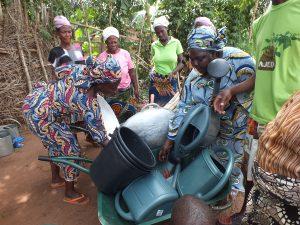 GAZELLE HARAMBEE Jardin potager Djégou Nagot   2014 (Bénin)