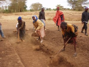 GAZELLE HARAMBEE Ormiti Project 2014 Olchoro (Kenya)