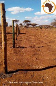 GHA Projet Ormiti 2015 Kenya